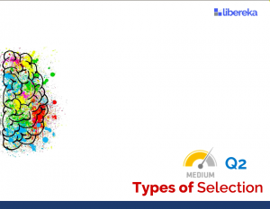 Application - Types of Selection (Medium)